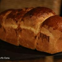 Brioche8503 copie